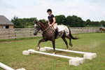 Summer Horseback Riding Camp Long Island
